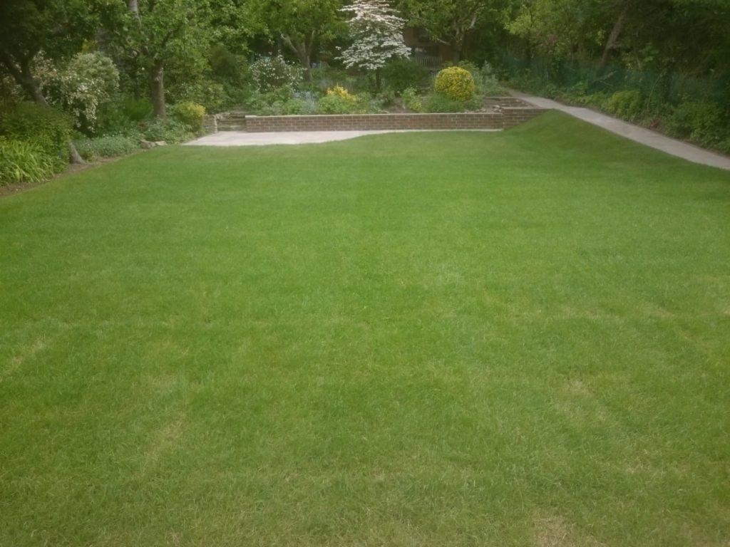 selsdon landscape garden