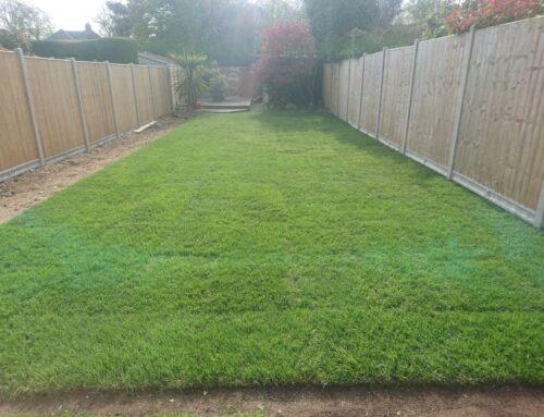 Returf of Garden Lawn West Wickham